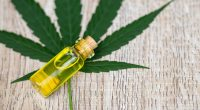 CANNABIDIOL: A BASIC GUIDE